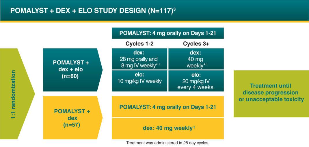 POMALYST® + dexamethasone + elotuzumab (EPd) Clinical Trial Design - POMALYST + dex + elo Study Design (N=117) with 1:1 randomization of treatment until disease progression or unacceptable toxicity.