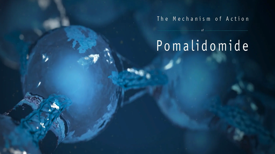 POMALYST® (pomalidomide) mechanism of action